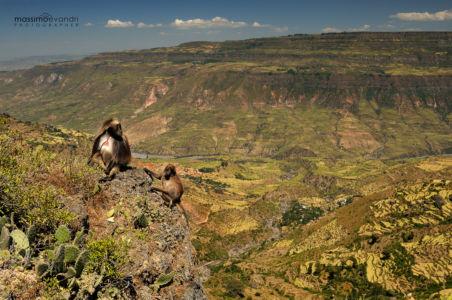 2013- 11-  000481 Etiopia-Debre Libanos  Rift Valley